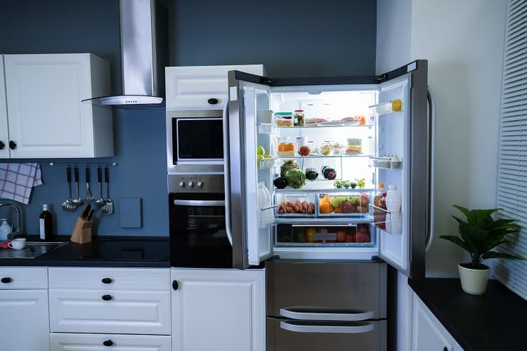 Clean Out Your Refrigerator Before You Leave On An Extended Vacation
